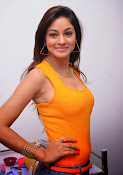 Actress Shilpi Sharma Hot Photo shoot-thumbnail-15