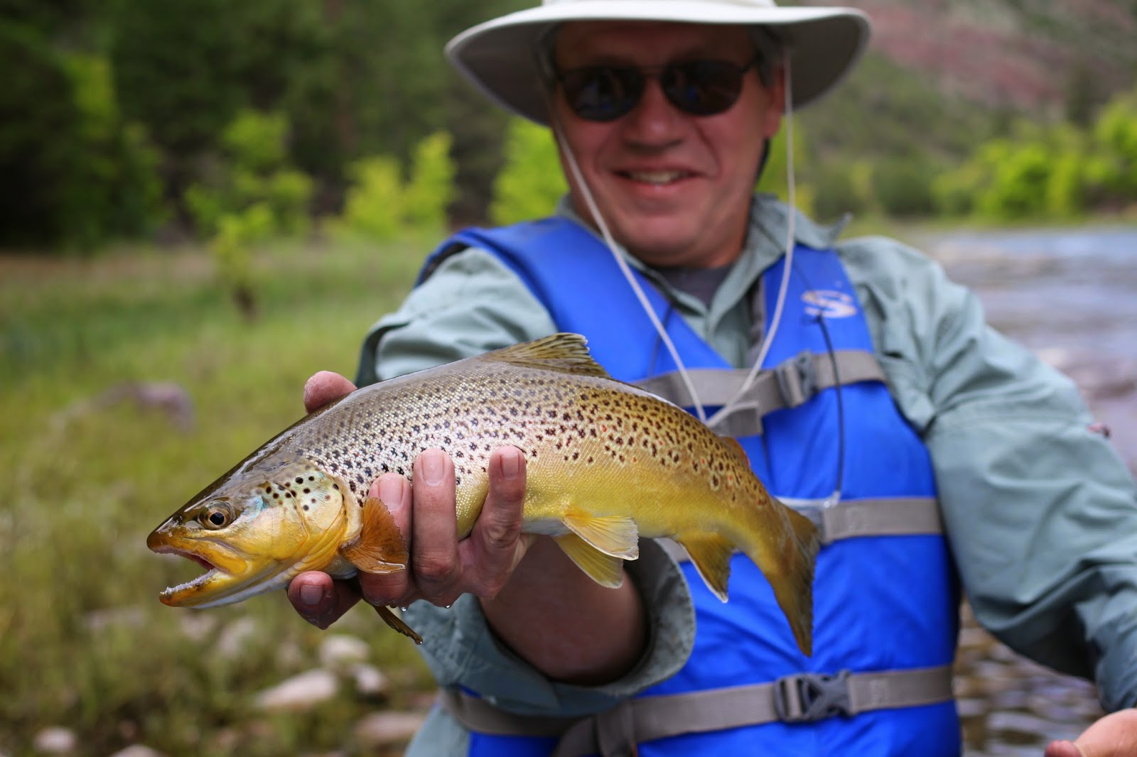 Fly+Fish+the+Green+River+A+section+with+Jay+Scott+Outdoors+during+the+Cicada+Hatch+June+2014+7.JPG
