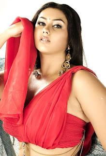 Namitha Bikini Boobs pics