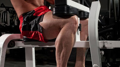Leg Training Plateau