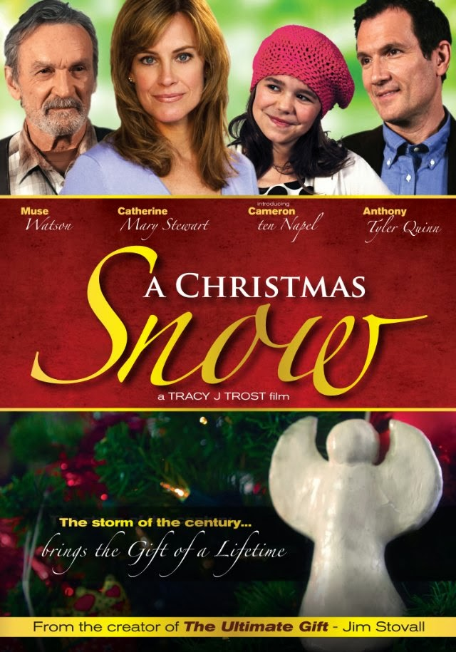 a widowed new york city architect and his young daughter take a christmas vacation and end up in a small mystical town in colorado where everyone belives in - The Christmas Box Movie