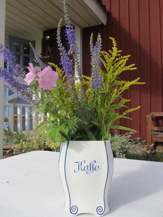 Blomster i en kaffeburk
