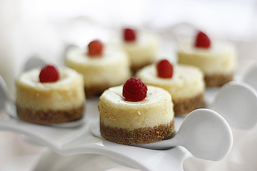 Mini Cheesecakes - {Tasty} Tuesdays