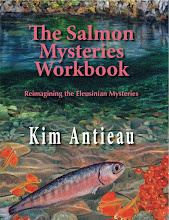 The Salmon Mysteries Workbook