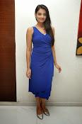 Nikitha Narayan glam pics in blue-thumbnail-20