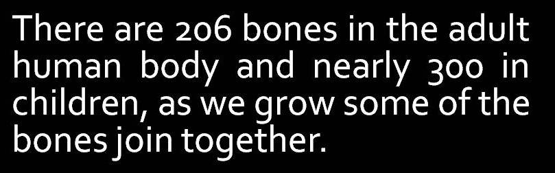 number of bones in human body are different from kids to adults, Cephalic Vein