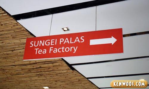 cameron highlands tea factory