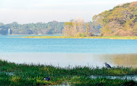 bvkmohan.blogspot.in,bvkmohan,nye 2016,wanderlust,bike life,touring,kukkarahalli lake