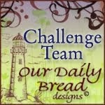 Challenge Team 2014