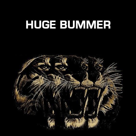 HUGE BUMMER