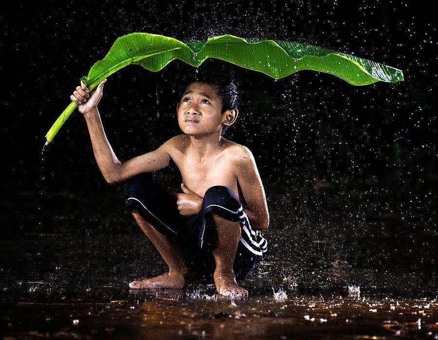 Trú mưa lá chuối