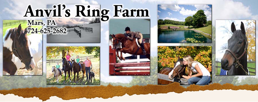 Anvil's Ring Farm