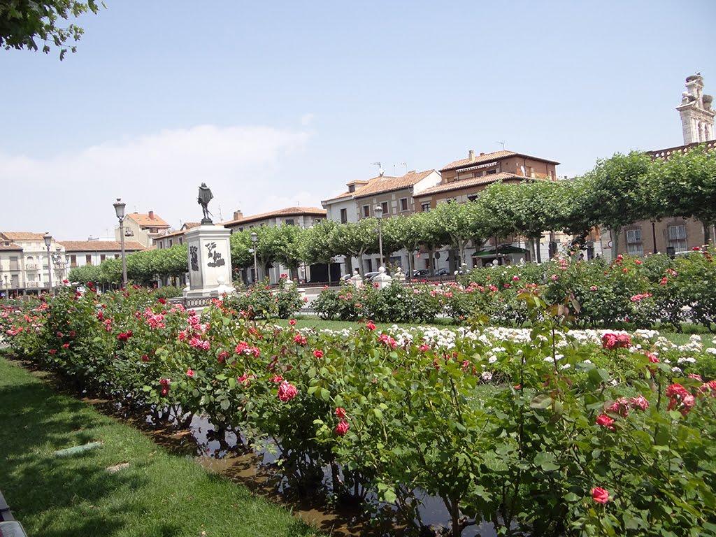 El tiempo en Alcalá de Henares