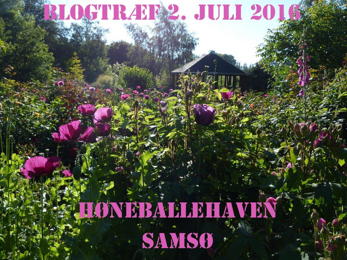 Blogtræf på Samsø