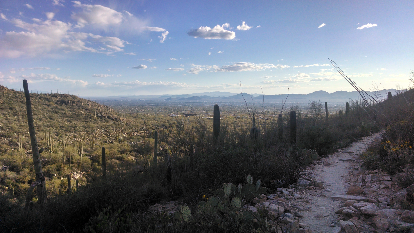 Hello Tucson