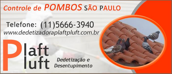 Controle de Pombos São Paulo 24 Horas - Dedetizadora Plaft Pluft