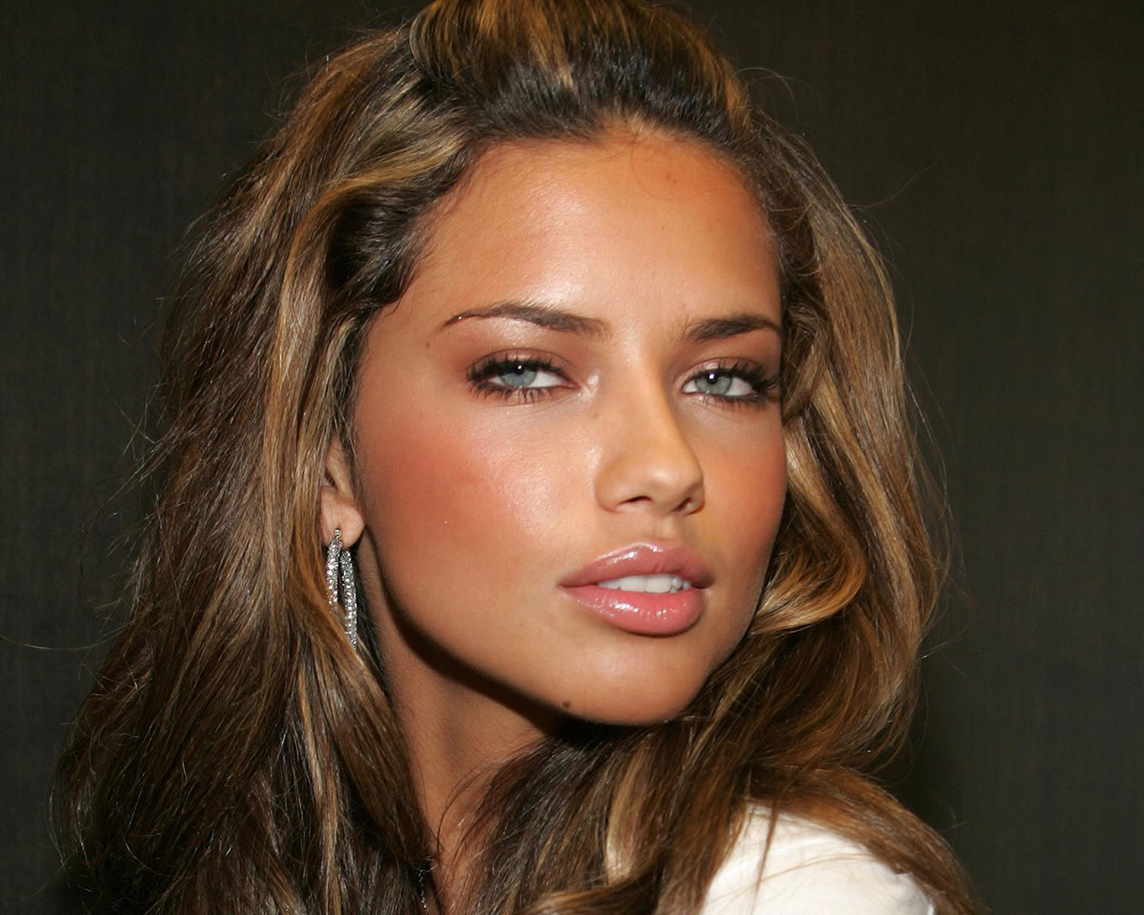 Adriana lima Wallpaper 2 With 1280 x 1024 Resolution ( 393kB )