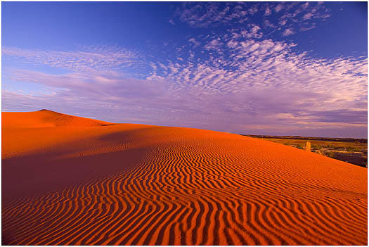 Simpson Desert of Australia