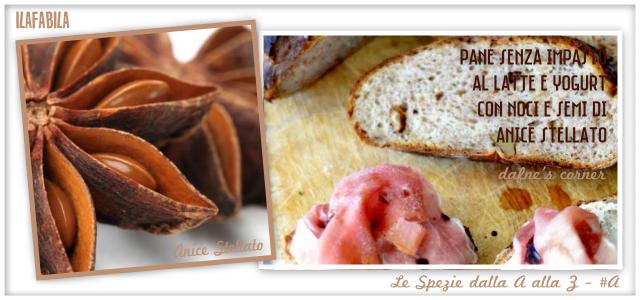 Anice Stellato - Pane senza impasto al Latte e Yogurt con Noci e Semi di Anice Stellato - Dafne's Corner
