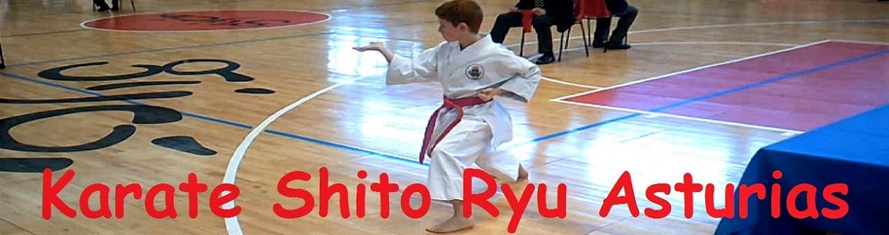 KARATE SHITO RYU ASTURIAS