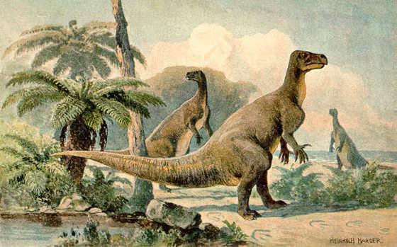 Iguanodontes_Burgos