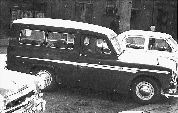Delfino Car Company