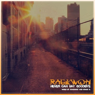 "Download ""Never Can Say Goodbye"" by Raekwon"