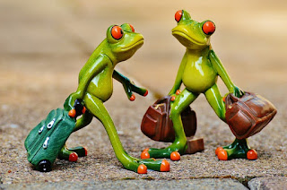 frogs on vacation