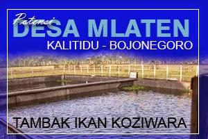 SMS Center Bojonegoro