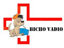 Enfermaria Bicho Vadio