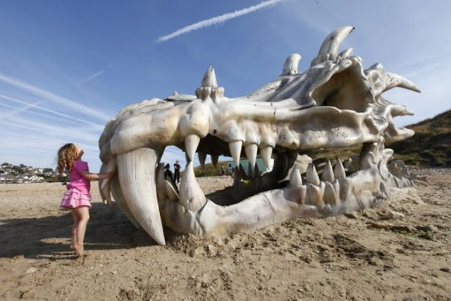 Giant Dragon Skull Appears On Dorset's Charmouth Beach