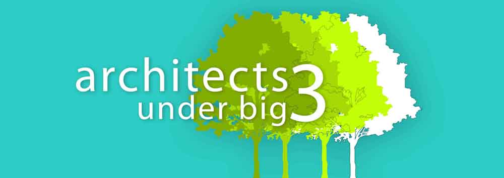 Architects Under Big 3