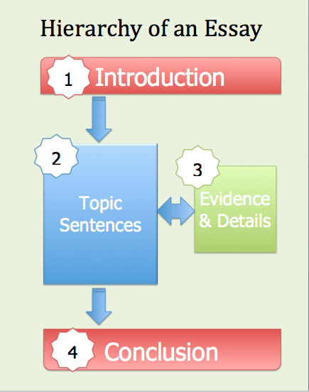 where does the thesis go in a conclusion The conclusion is intended to help the reader understand why this does not refer to this is not a problem unless you forget to go back and refine the.