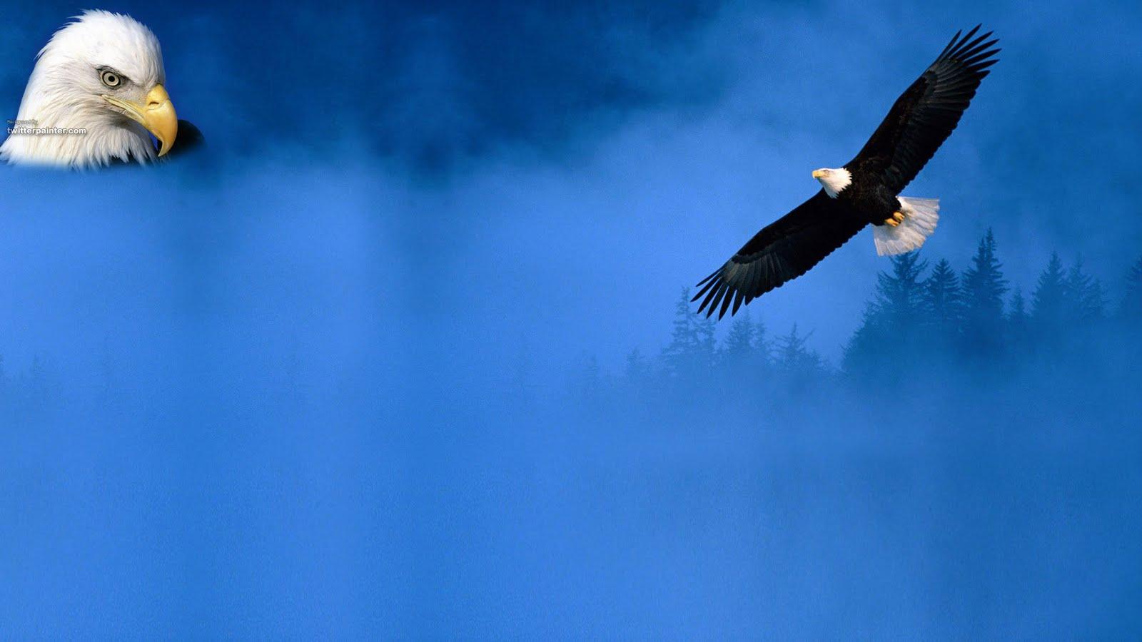 My Background Blog Eagle Backgrounds