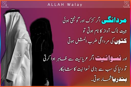 Mardaangi Aur Niswaaniat - Urdu Wise Quotes, Bikhray Motti
