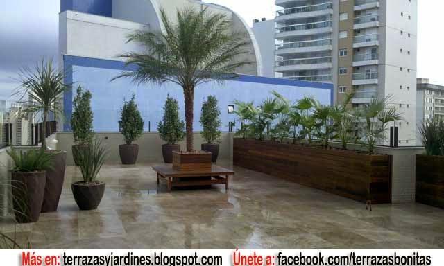 Jardin en la azotea terrazas y jardines fotos de jardines for Jardines urbanos en terrazas