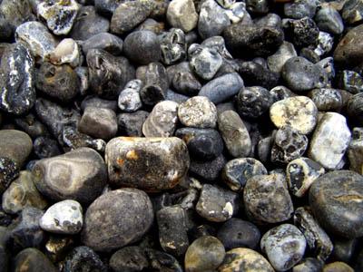 Agates Of The Oregon Coast November 2012
