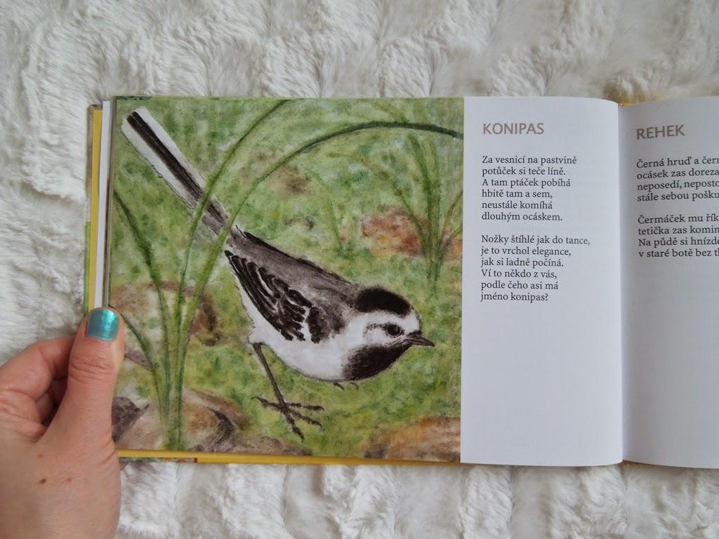 ptackove
