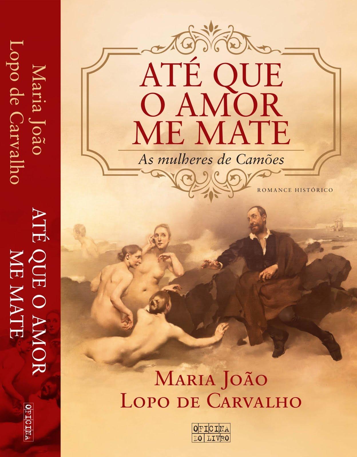 O livro que estou a ler