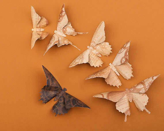 Very sweet and cute animals paper butterflies on wall for How to make paper butterflies for wall
