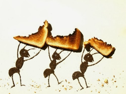 01-Ants-Photographer-Illustrator-Sarah-Rosado-Dirt-Art-Dirty-Little-Secrets-www-designstack-co