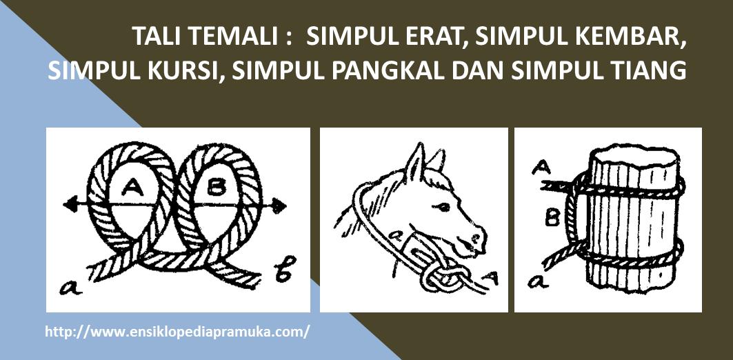 Ensiklopedia Pramuk: Tali Temali : Simpul Erat, Simpul