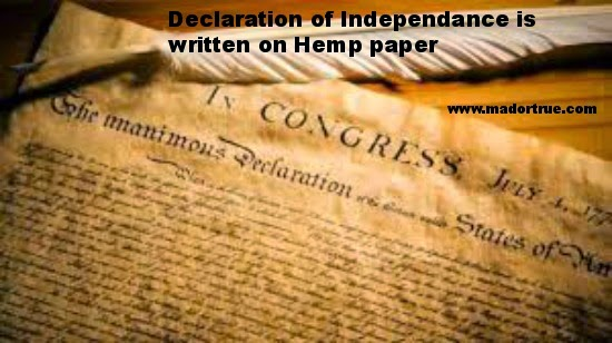 declaration of independence hemp paper Was the declaration of independece written on papyrus or on cowhide and benjamin franklin even owed a hemp paper the declaration of independence gave.