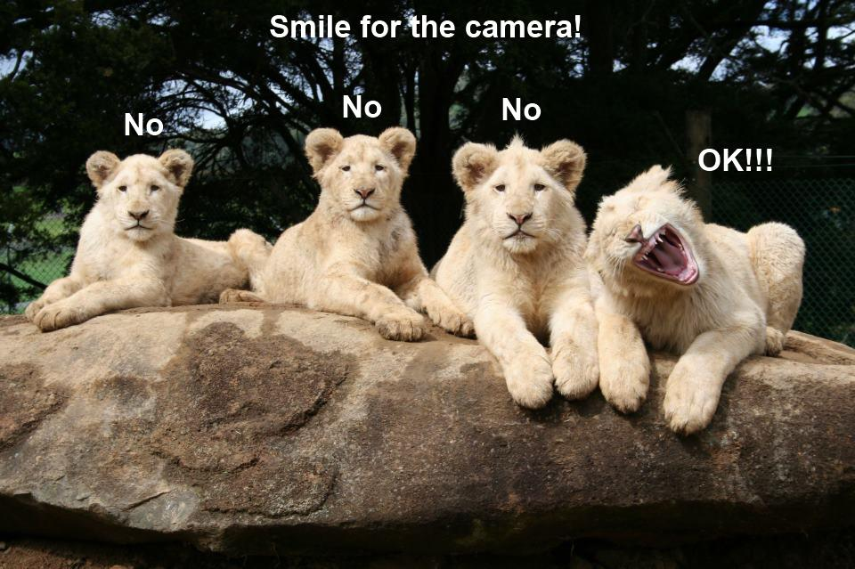 smile-for-the-camera.jpg