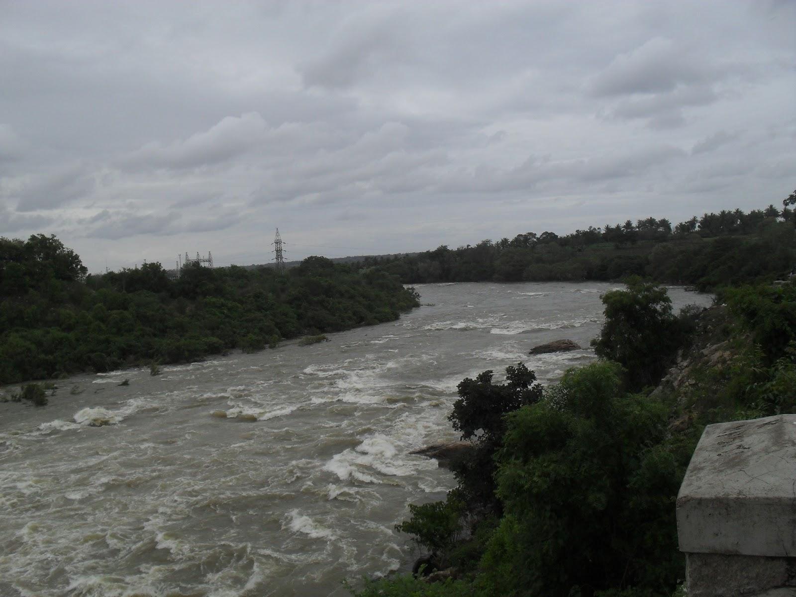 The Kaveri River heading to Krishna Raja Sagar Dam  KRS  near Mysore