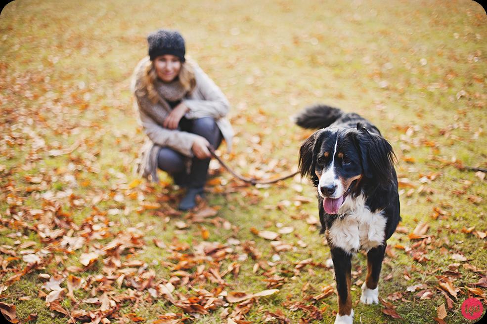 sesja zdjeciowa na urodziny z psem