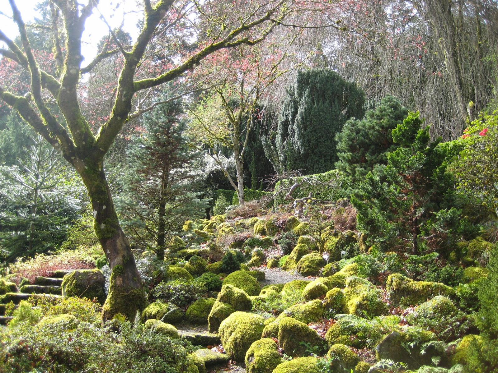 a few weeks ago danger garden posted about elk rock garden at bishops close wow thanks danger i had never been and being a gardener and a native - Elk Rock Garden