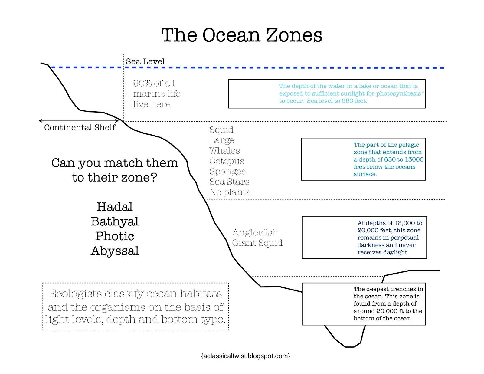Worksheets Ocean Zones Worksheet homeschooling with a classical twist ocean zones printable printable