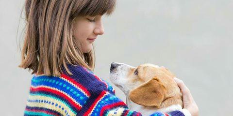 Melek hayvanlar, hayvanlarla iletişim facebook grubu