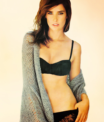 Cobie Smulders Hot Pictures,Images and Wallpapers 2012 ... Zac Efron Girlfriend